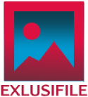 EXCLUSIFILE